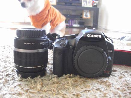 カメラ 12319553
