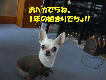カメラ 12319478
