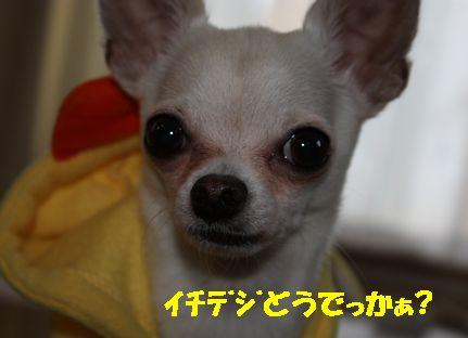 IMG_00120.jpg