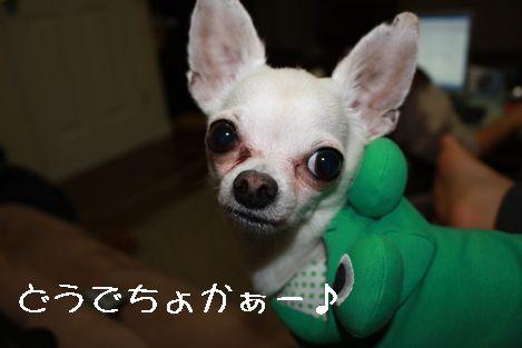 IMG_03640.jpg