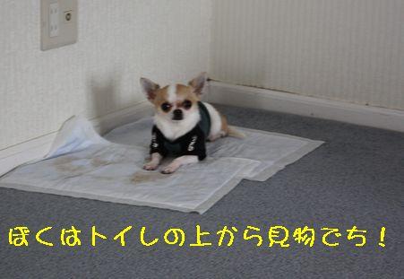 IMG_0447.jpg