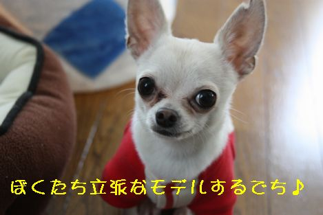 IMG_2580.jpg