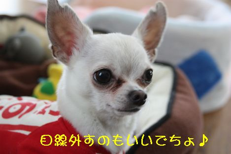 IMG_25930.jpg