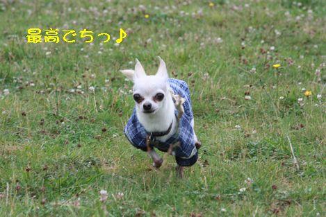 IMG_6483.jpg