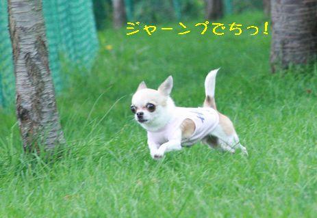 IMG_6978.jpg