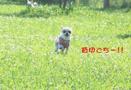 IMG_71250.jpg