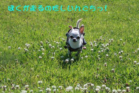 IMG_71820.jpg