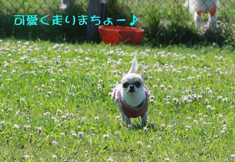 IMG_72130.jpg