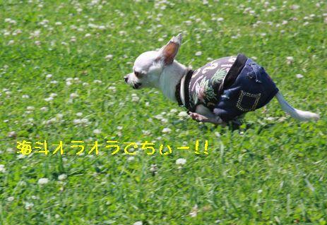 IMG_72400.jpg
