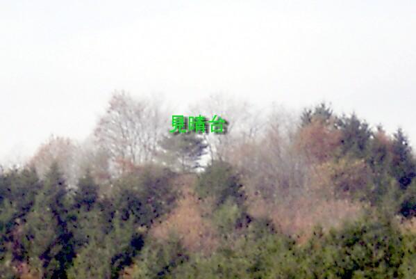 keyaki-002006s.jpg
