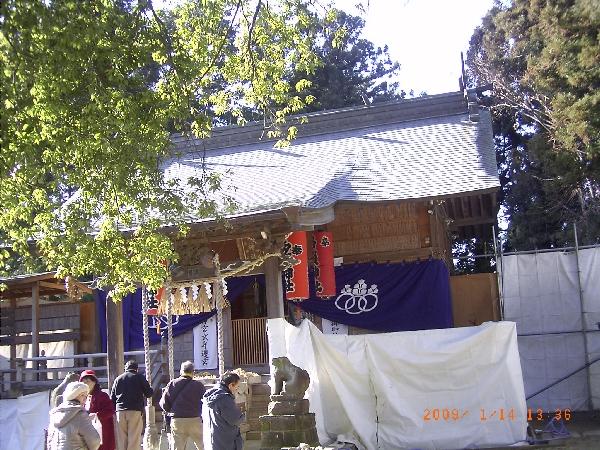 keyaki-002020s.jpg