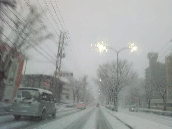 keyaki-002024s.jpg