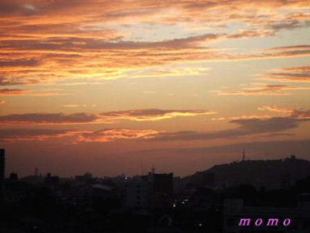 2009_1022夕焼け0045