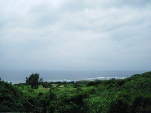 綺麗な緑と海