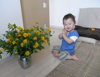 RIMG0724 ヒメヒマ2