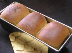 小麦ふすま食パン-焼上がり