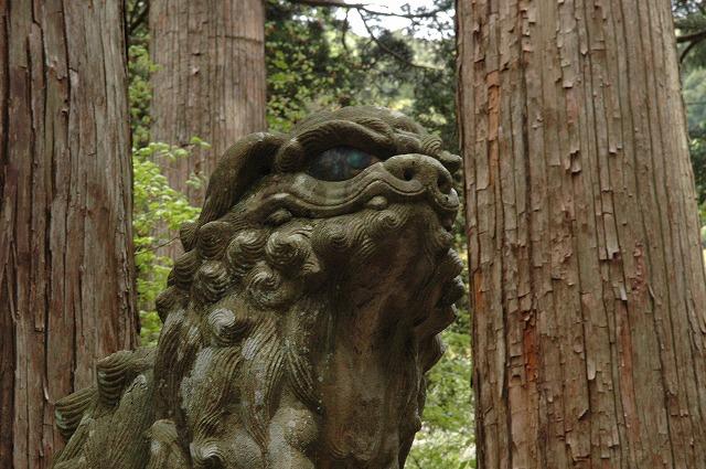 大神神社の狛犬1