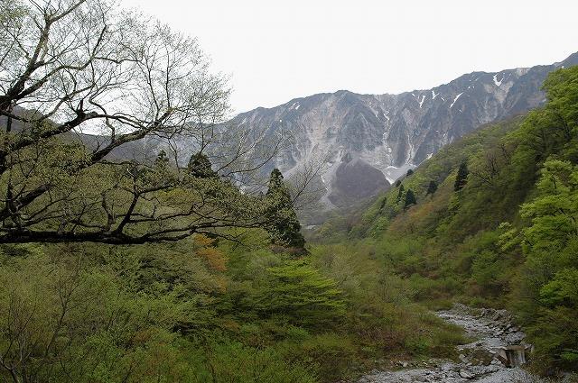 大山神社側から見た元谷