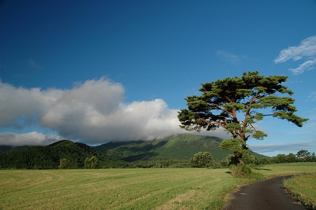鳩ヶ原への道中風景3