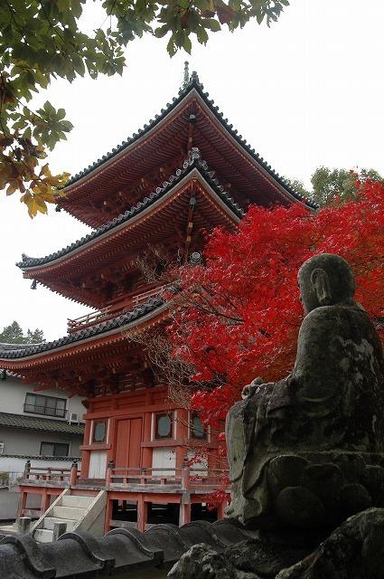 宝福寺の紅葉12