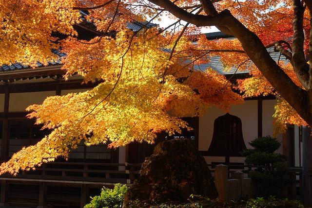 龍泉寺の紅葉3