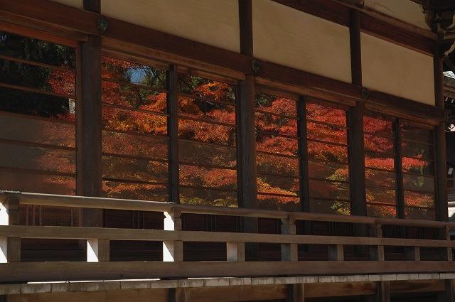 龍泉寺の紅葉14