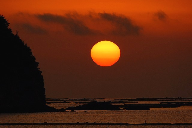長島の達磨24
