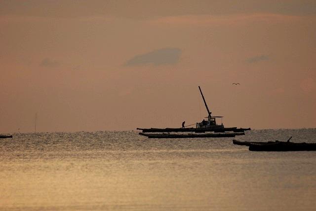 牡蠣漁船2