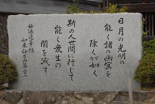 妙林寺の河津桜27