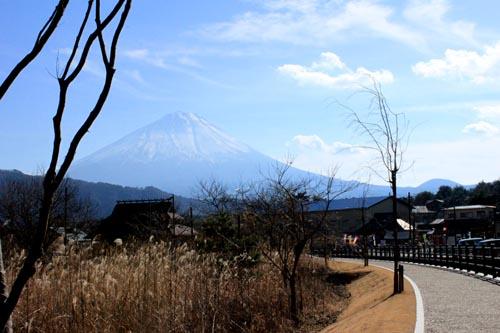 fuji06.jpg