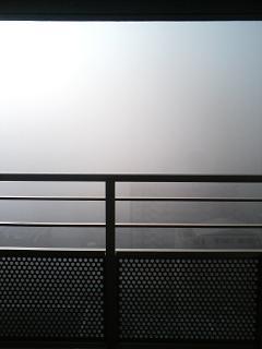 NYAKO20081210_1.jpg
