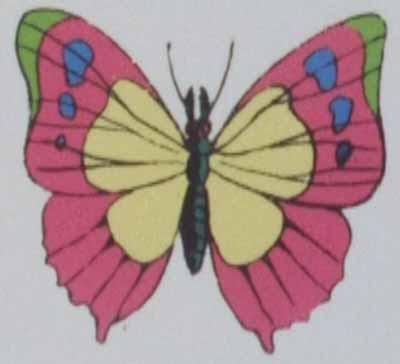 人の細胞を食べる蝶元画像