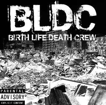 bldc.jpg