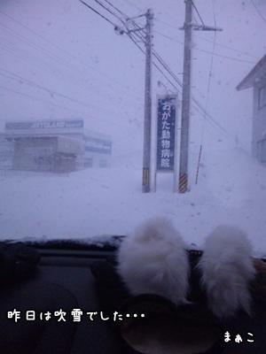 みろヘルニア雪