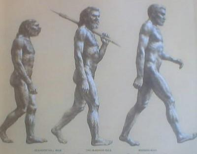 evolution_convert_20110702231004.jpg
