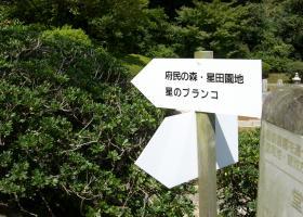 22_20110924101545.jpg