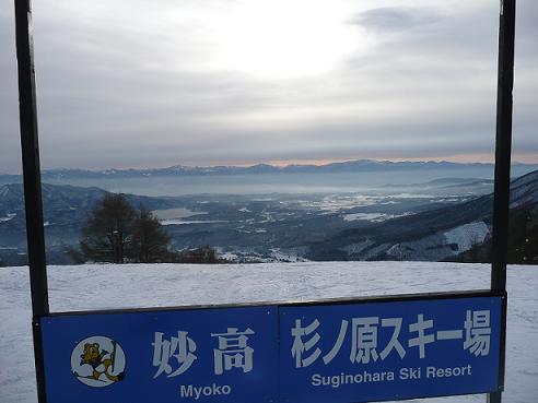 suginohara1.jpg