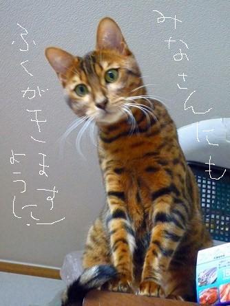 s-優野3ん 0410