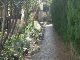 湧き水の道