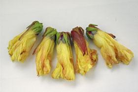 花オクラ2