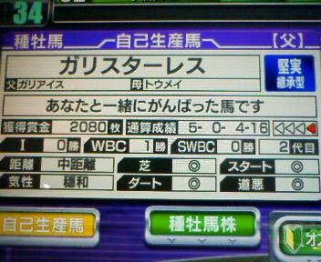 10_20091213154821.jpg