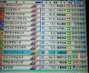 13_20090621181552.jpg