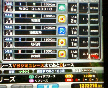18_20090621181859.jpg