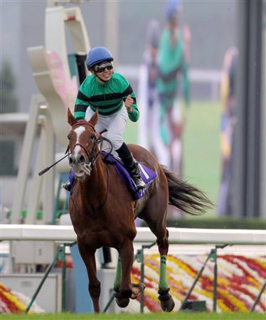 20091115-00000514-sanspo-horse-view-000.jpg