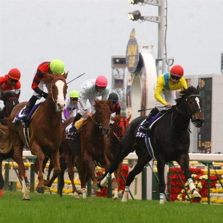20091129-00000008-spnavi-horse-view-000.jpg