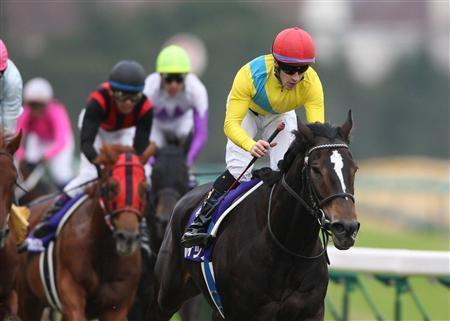 20091207-00000500-sanspo-horse-view-000.jpg