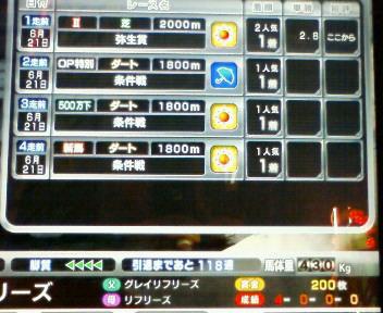 4_20090621180811.jpg
