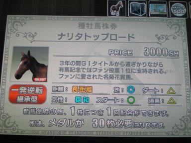4_20091127232410.jpg