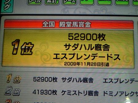 5_20091129162527.jpg