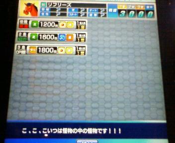 6_20090912194056.jpg